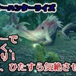 【モンハンライズ】タマミツネ討伐 ハンマーで練習!1