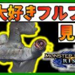 【MHP2G】皆大好き(嫌い)『奇怪竜』フルフル復帰おめでとう!【モンスターハンターライズ】