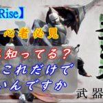 【モンハンライズ】ランス!初心者必見!武器指南・おすすめコンボや使い方について【MHRise】