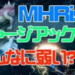 【MHRise】ライズ版チャージアックス、不人気なのか!?【モン活】