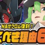 【フェス限定】N&ゼクロムを絶対に引くべき理由6選!【ポケマス /ポケモンマスターズEX】
