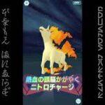 [プレイ動畫] ポケモンマスターズ (Pokémon Masters) EX: game-play 84