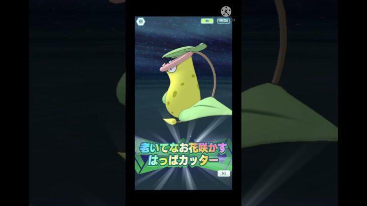 Ramos& Victreebel Sync Move #PokemonMasters EX -フクジ&ウツボット.バディーズ技- #ポケマスex #shorts  #ポケモンマスターズ